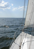 Sailing in Charlotte Harbor