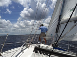 Sailing Lessons & Charters in Charlotte Harbor