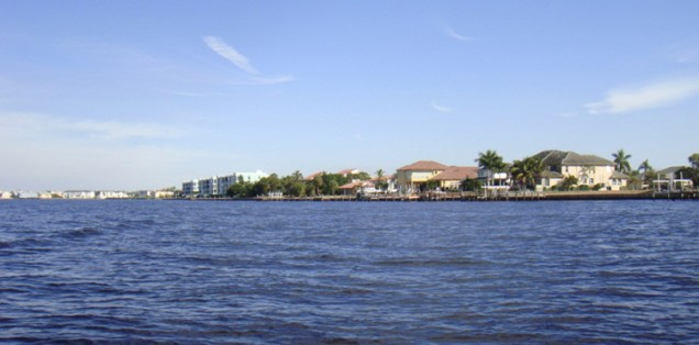 Shoreline in Charlotte Harbor