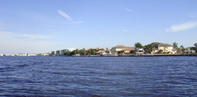Shoreline in Charlotte Harbor